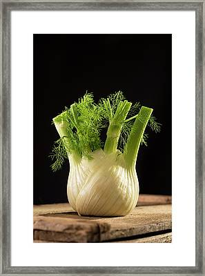 Fennel Framed Print by Aberration Films Ltd