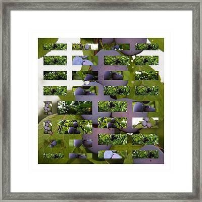 Fensterbild Framed Print