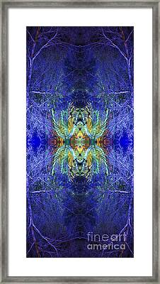 Fereshteh Framed Print by Tim Gainey