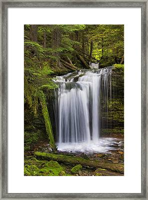 Fern Falls Framed Print by Mark Kiver