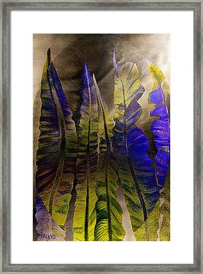 Fern Forest Framed Print