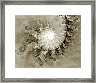 Fern Framed Print by Kevin Trow