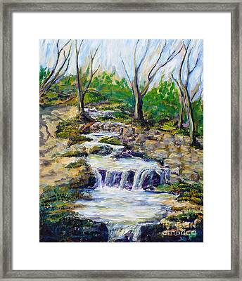Ferndell Creek Noon  Framed Print by Randy Sprout