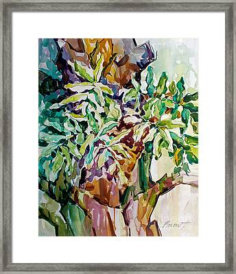 Ferns And Bismark Rhythms  Framed Print