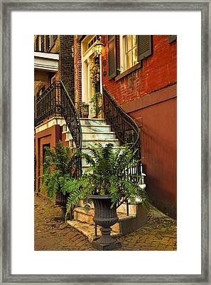 Ferns At The Entryway Framed Print