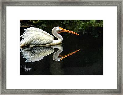 Feron's Heron Framed Print by Glenn Feron