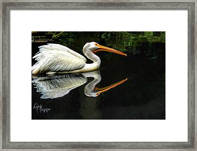Feron's Heron Framed Print