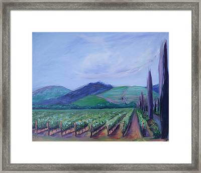 Ferrari Carano Vineyard Framed Print by Donna Tuten