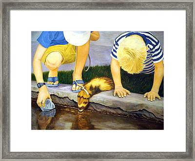 Ferret And Friends Framed Print