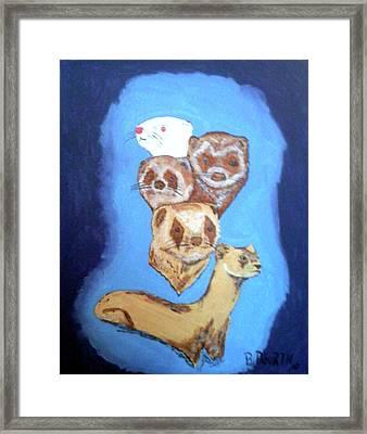 Ferrets Galore Framed Print by Brian Dearth