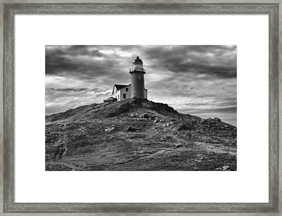 Ferryland Lighthouse Framed Print