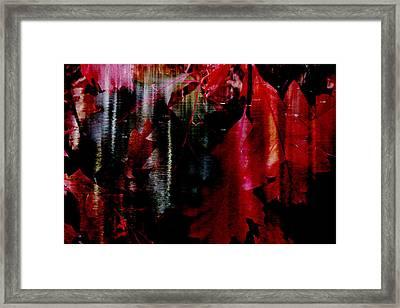 Festival  Framed Print