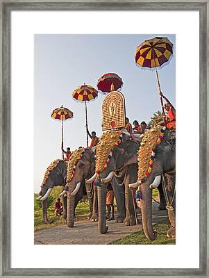 Kerala Festival Elephants Framed Print by Dennis Cox WorldViews