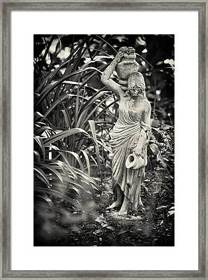Fetching Water Framed Print by Patrick M Lynch