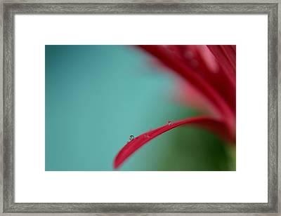 Few Are Those Framed Print by Melanie Moraga