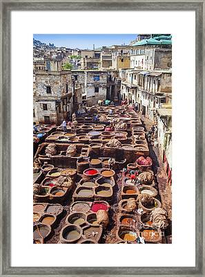 Fez Tannery Framed Print by Patricia Hofmeester
