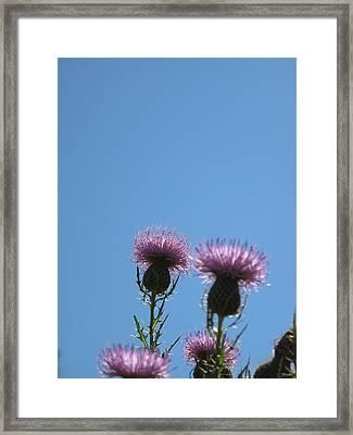 Fidelity. Framed Print