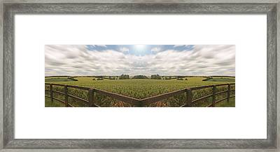 Field And Sky, South England Framed Print by Vast Photography
