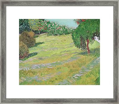Field In Sunlight Framed Print