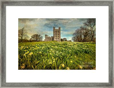 Field Of Daffodils Framed Print by Adrian Evans