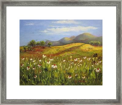 Field Of Daisies Framed Print by Dottie Kinn