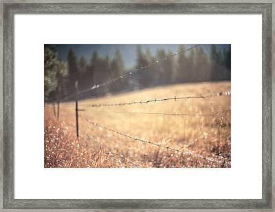 Field Of Dreams Framed Print by Aaron Aldrich