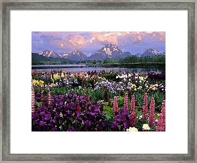 Field Of Dreams Framed Print by Cole Black