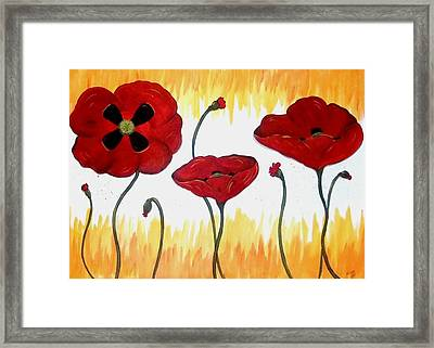 Field Of Fire Framed Print by Cindy Micklos