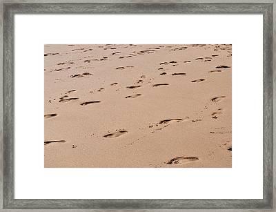 Field Of Footprints Framed Print by Dan  Grover