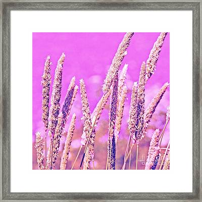 Field Of Grass And Wildflowers Framed Print by Artist and Photographer Laura Wrede