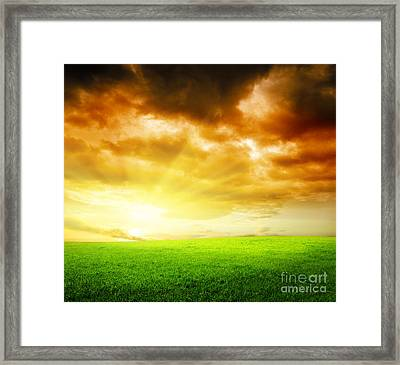 Field Of Grass Framed Print by Boon Mee