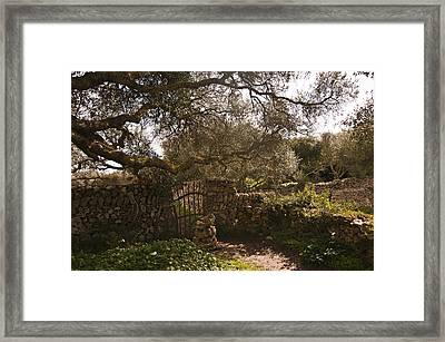 Traditional Minorcan Gate - Field Of Greens Framed Print