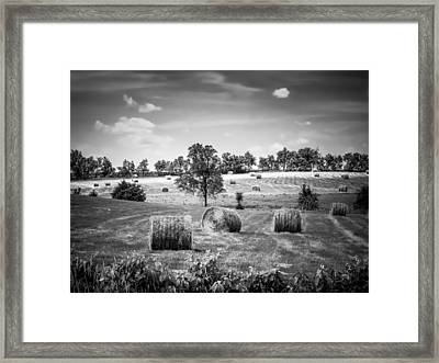 Field Of Hay In Black And White Framed Print by Beverly Parks