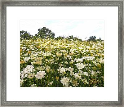 Field Of Lace Framed Print by Doug Kreuger