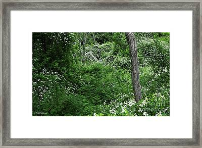 Field Of Love A Heart And Flowers Framed Print by Michelle Wiarda