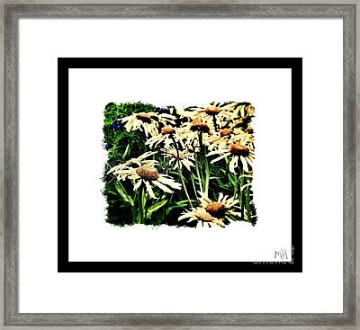 Field Of Love Framed Print by Marsha Heiken