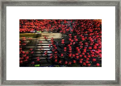 Field Of Men-roses Framed Print