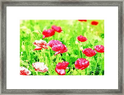 Field Of Painterly Red And Orange Poppies Framed Print