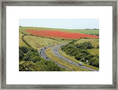 Field Of Poppies Framed Print by Martin Bond