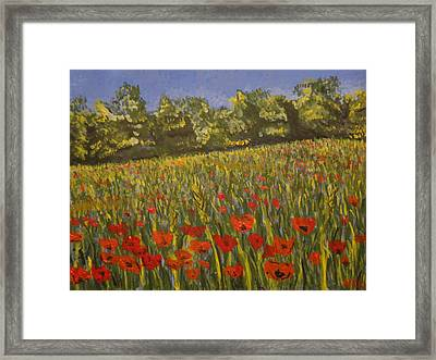 Field Of Poppies Framed Print by Paul Benson