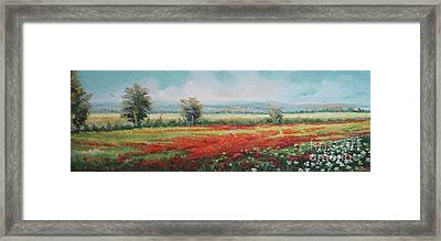 Field Of Poppies Framed Print by Sorin Apostolescu