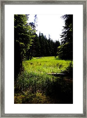 Field Of Possibilities Framed Print