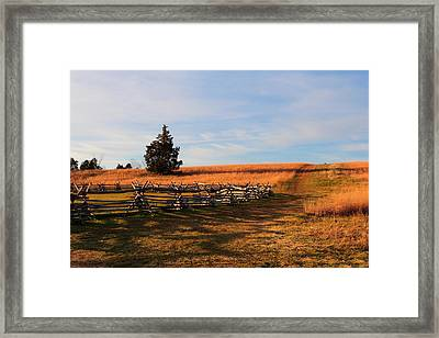 Field Of Shadows Framed Print