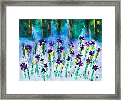 Field Of Violets Framed Print by Frank Bright