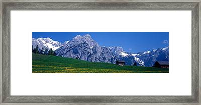 Field Of Wildflowers With Majestic Framed Print by Panoramic Images