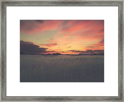 Field On Fire Framed Print by Carrie Ann Grippo-Pike