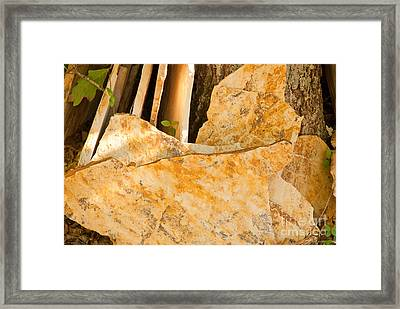 Framed Print featuring the photograph Field Stones by Lena Wilhite