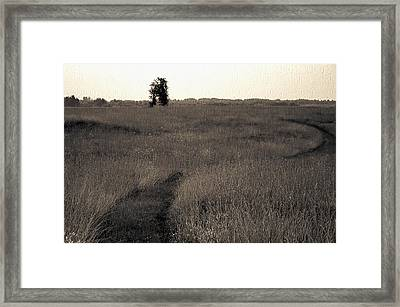 Field Ways Framed Print by Yevgeni Kacnelson