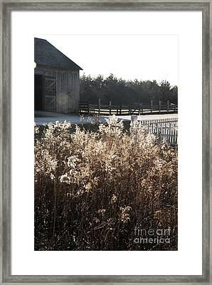 Field With Barn In The Background Framed Print by Birgit Tyrrell