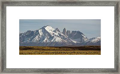 Field With Snowcapped Mountains Framed Print by Panoramic Images